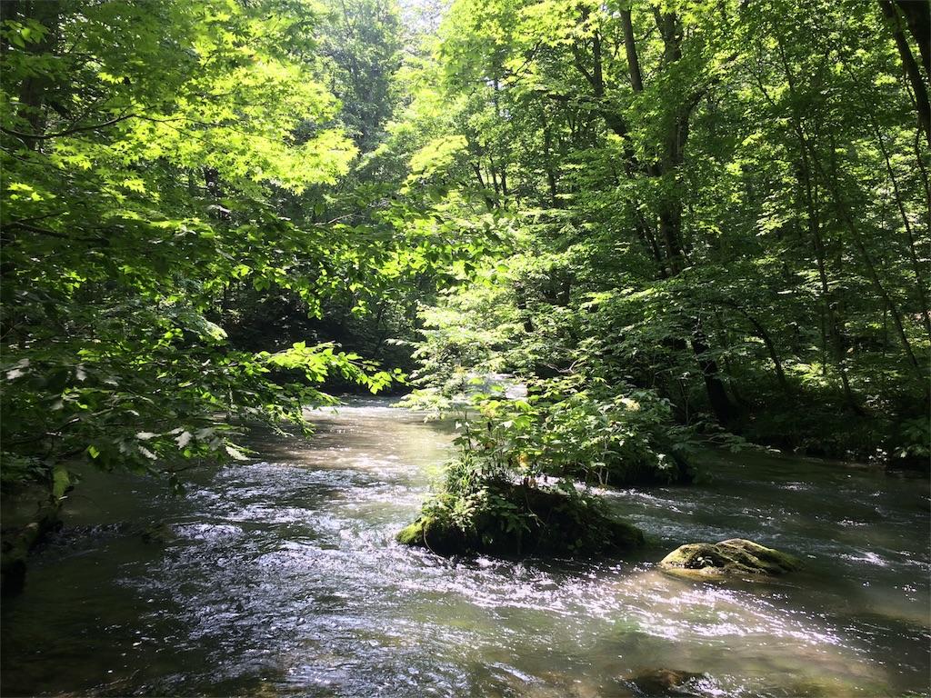 f:id:monteverde-aroma:20180726094819j:image