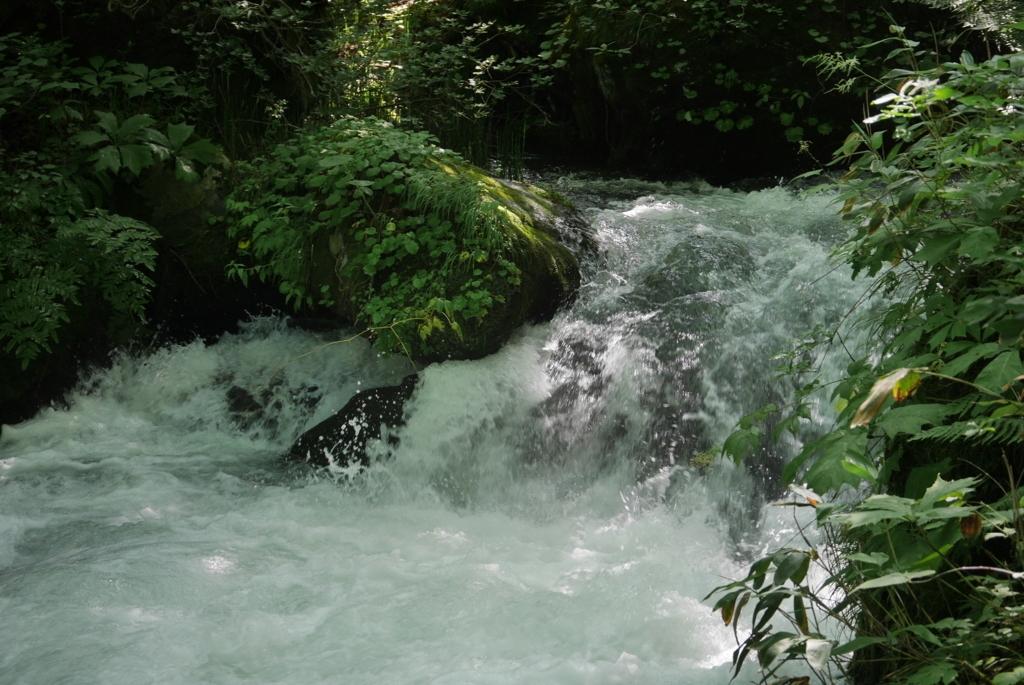 f:id:monteverde-aroma:20180726143102j:plain