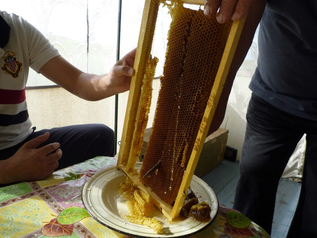 f:id:monteverde-aroma:20190714072901j:plain