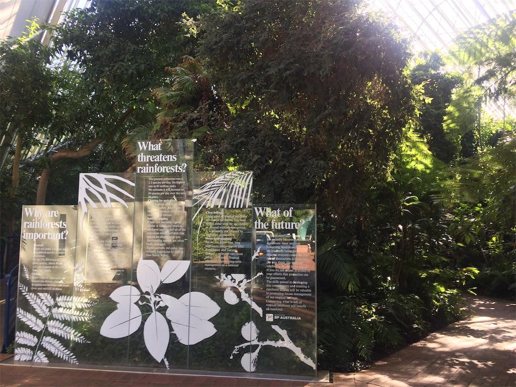f:id:monteverde-aroma:20190811142658j:plain