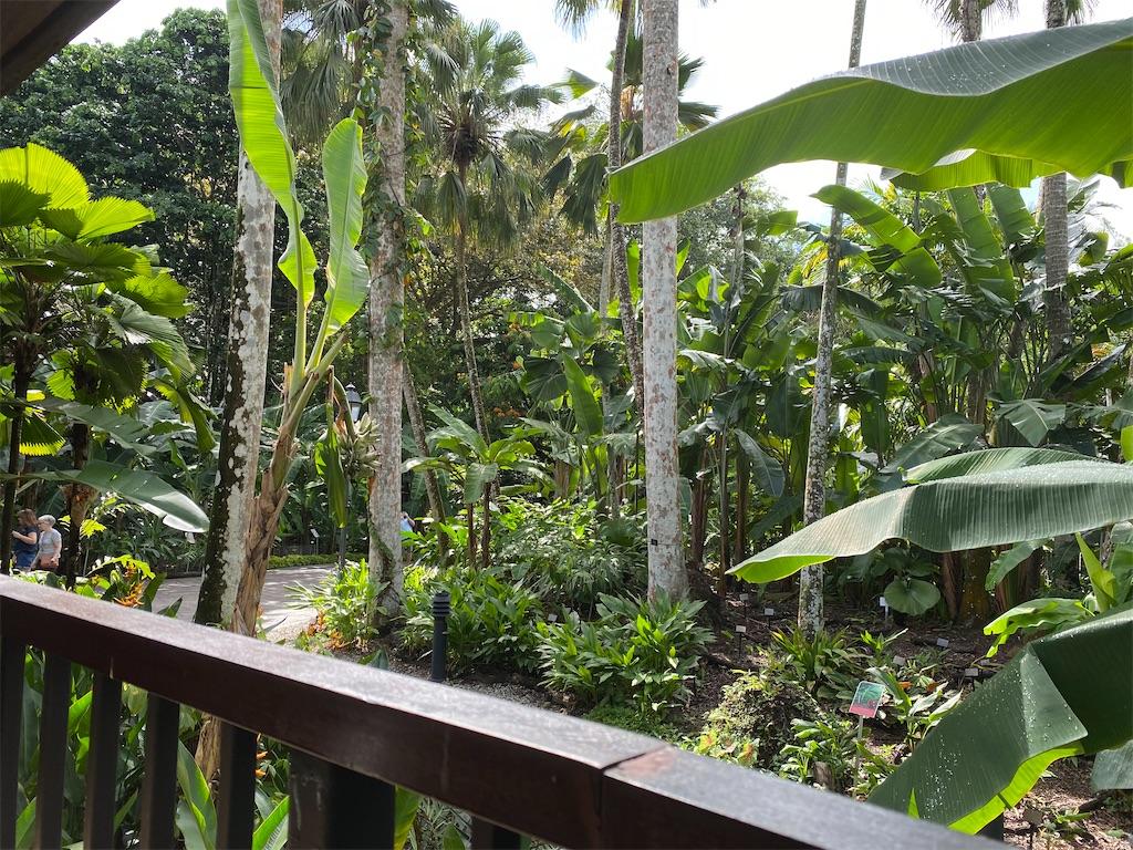 f:id:monteverde-aroma:20200215142125j:plain