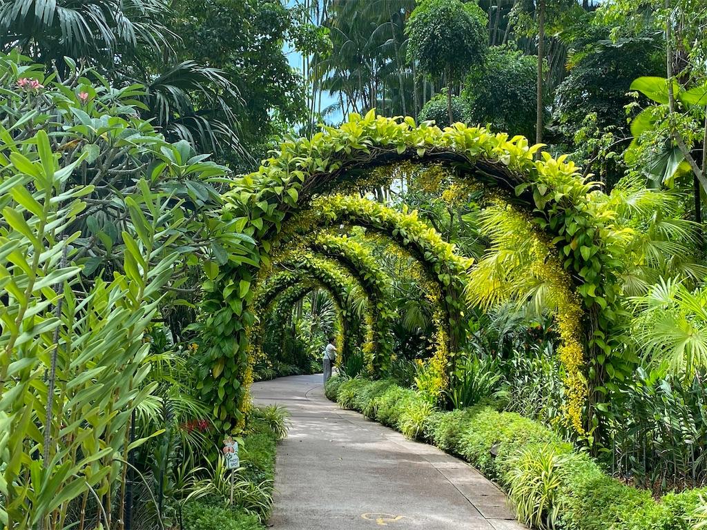 f:id:monteverde-aroma:20200215142246j:image