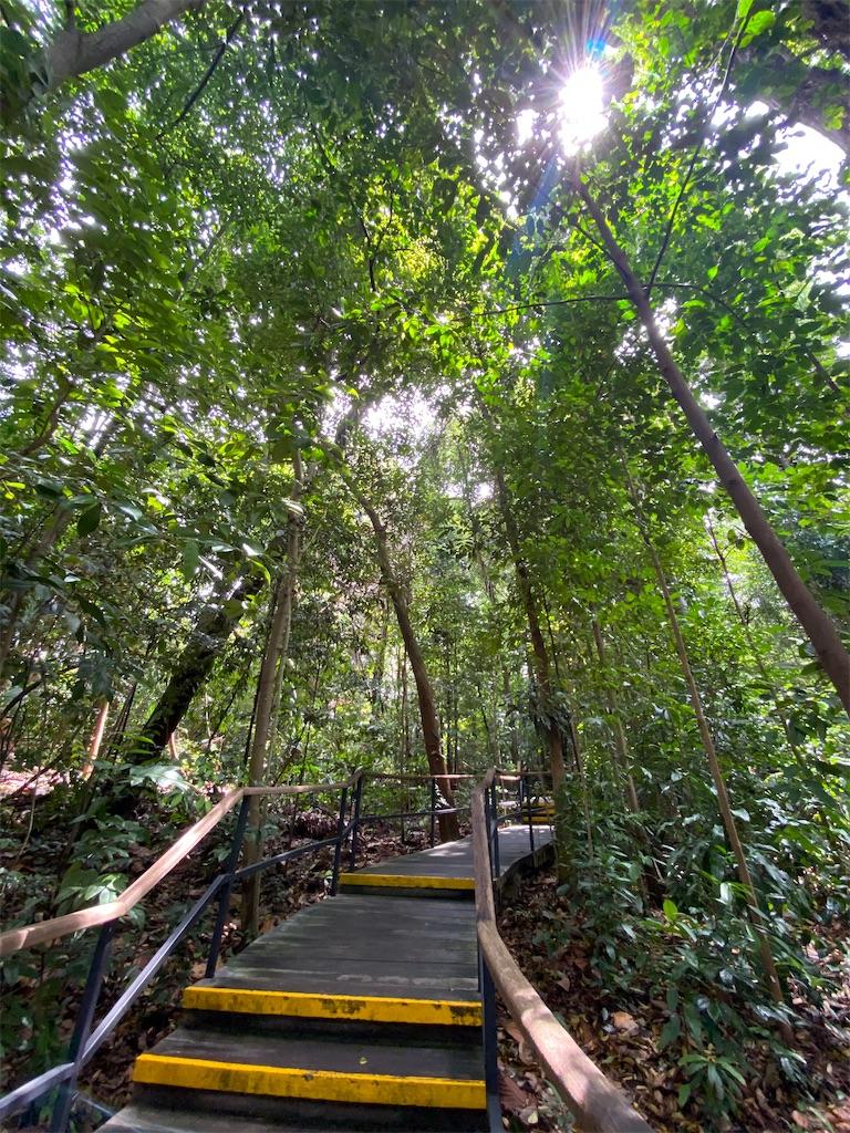 f:id:monteverde-aroma:20200216062910j:image