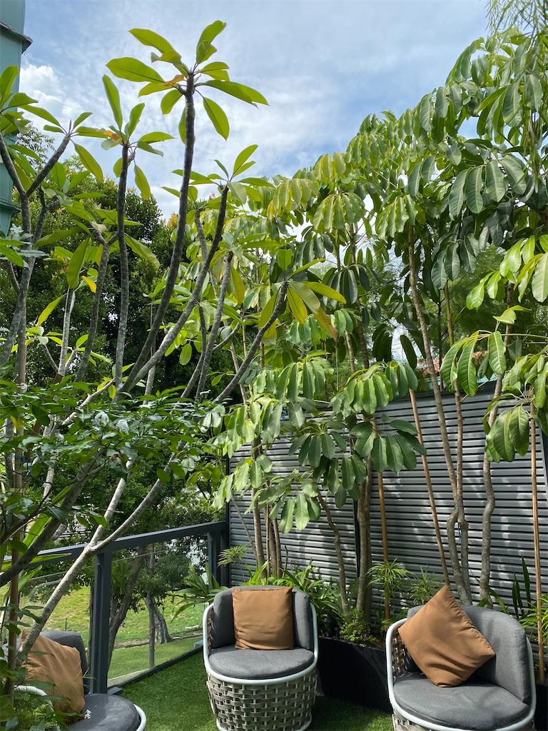 f:id:monteverde-aroma:20200216131952j:image