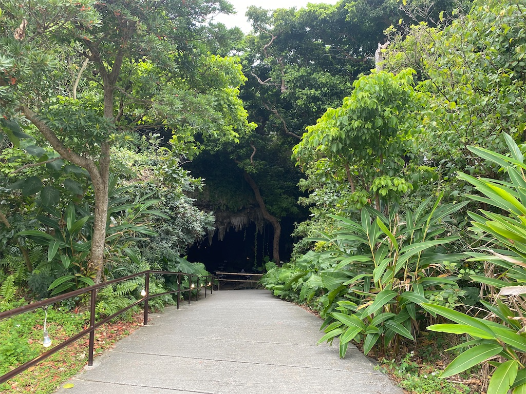 f:id:monteverde-aroma:20200315100958j:plain