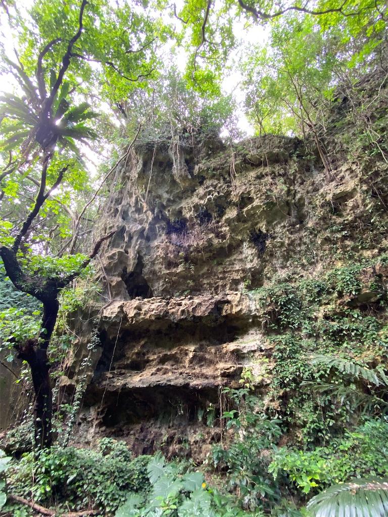 f:id:monteverde-aroma:20200404185924j:image