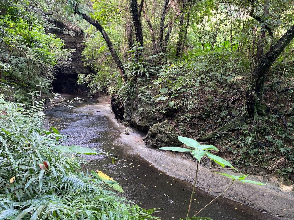 f:id:monteverde-aroma:20200405082502j:image