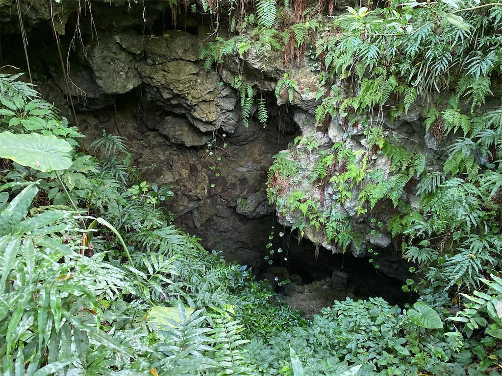 f:id:monteverde-aroma:20200405100556j:image