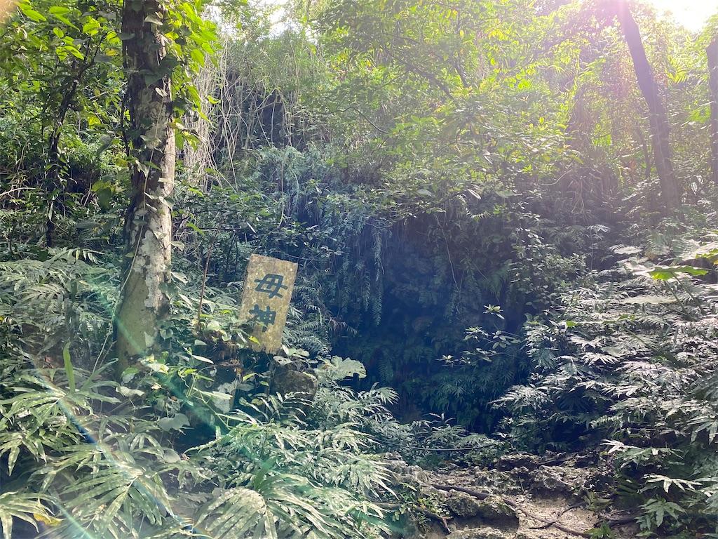 f:id:monteverde-aroma:20200405100600j:image