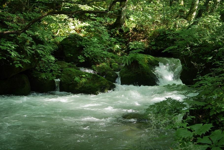 f:id:monteverde-aroma:20200410075422j:plain