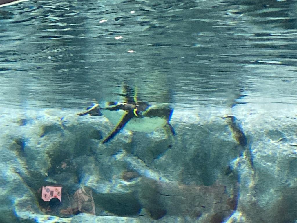 f:id:monteverde-aroma:20200615085801j:image