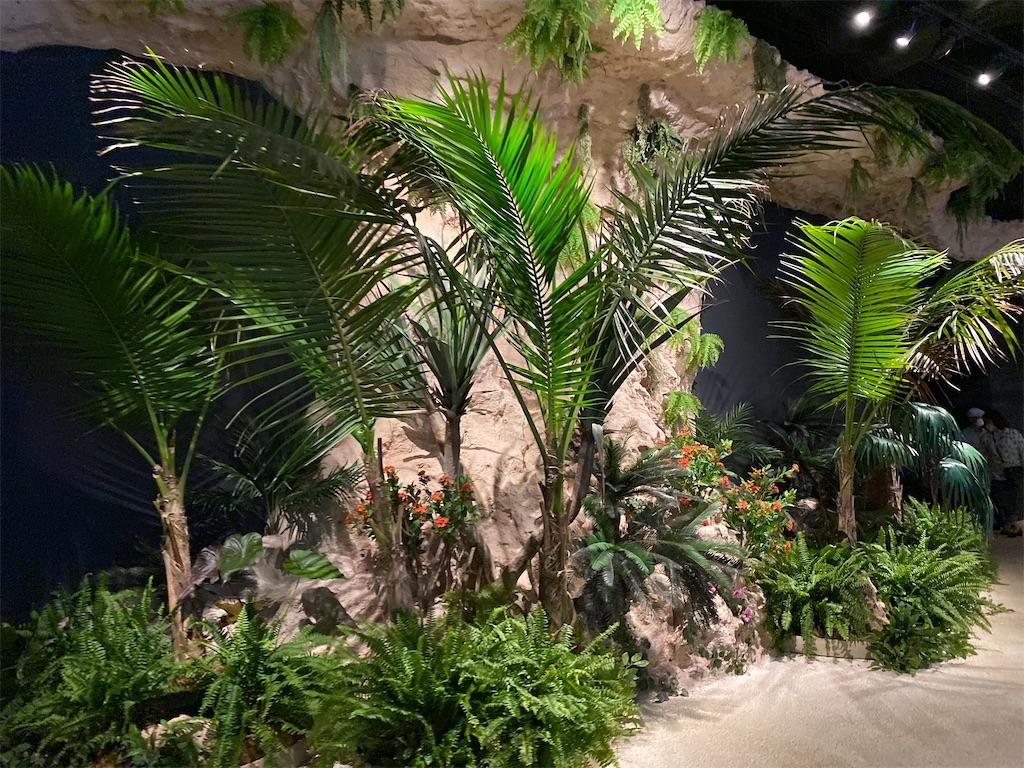 f:id:monteverde-aroma:20200615091035j:image